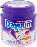 Daygum Gomme da Masticare senza Zucchero Gusto Menta